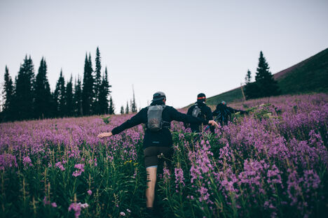 Three hikers with hydration packs walking through a field of flowers.