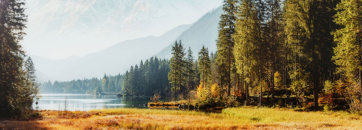 View of a lake, trees and mountains.