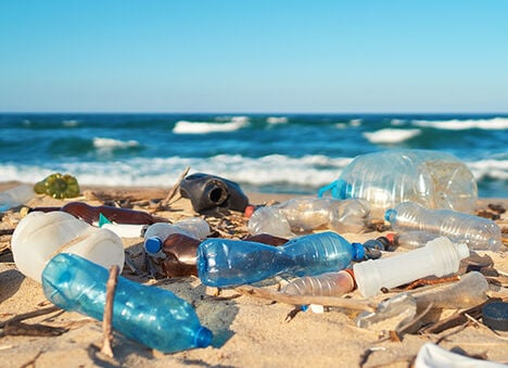 Plastic bottles washed up on a beach.